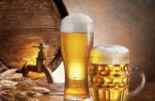 Бизнес-план пивоварни с собственным производством пива