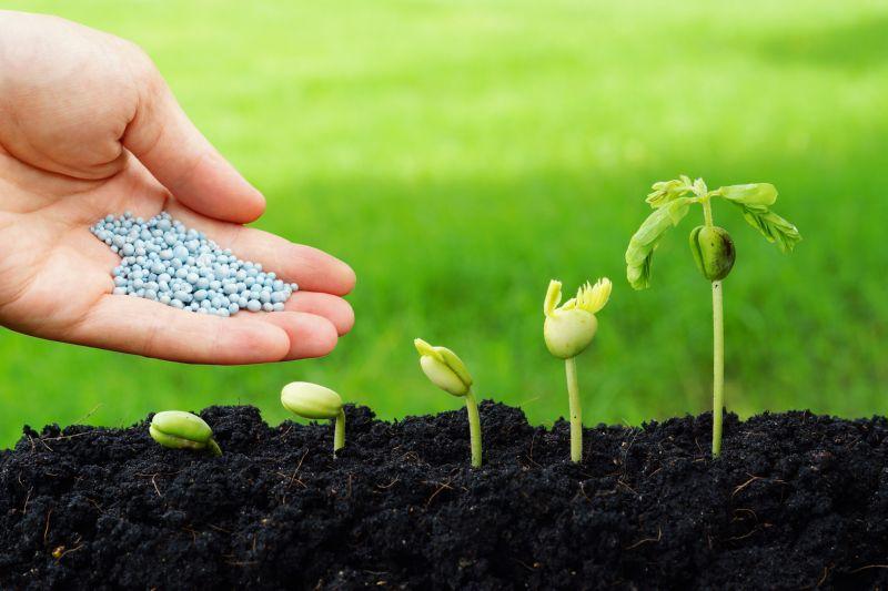 Бизнес план по производству жидких бактериальных удобрений