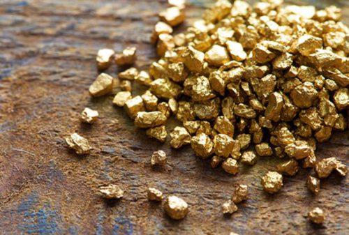 Бизнес-план добычи золота