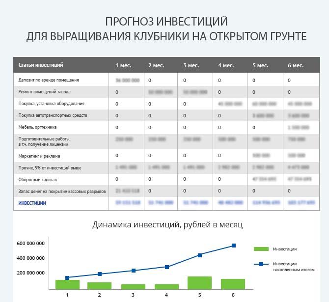 Детальный расчет инвестиций для запуска выращивания клубники