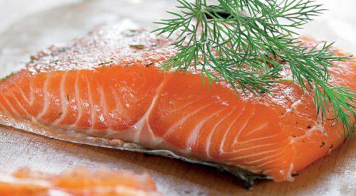 Бизнес-план лососевой фермы