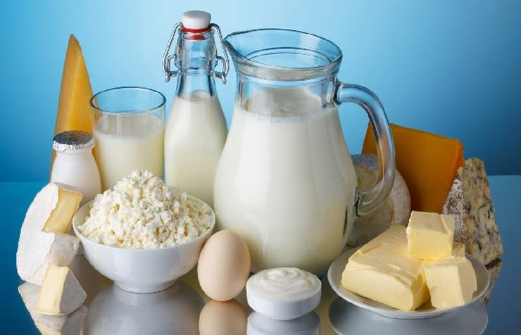Бизнес-план молочного завода по производству и переработке молока и молочной продукции с финансовым планом