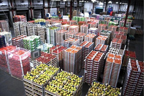 Бизнес-план овощехранилища