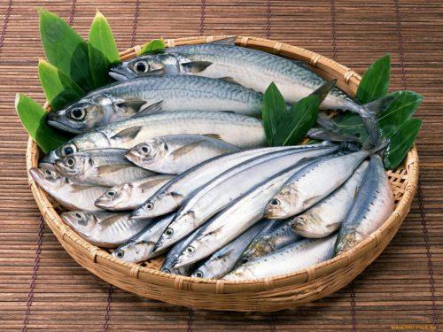 Бизнес-план открытия рыбного магазина продажи и торговли рыбой