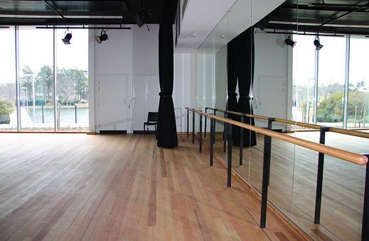 Бизнес-план школы студии танцев с расчетами