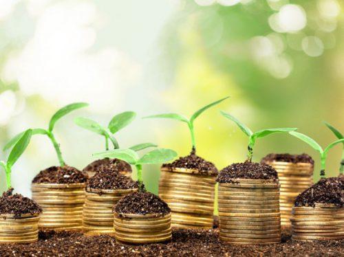 Валовая прибыль: формула расчета, отличие от прибыли