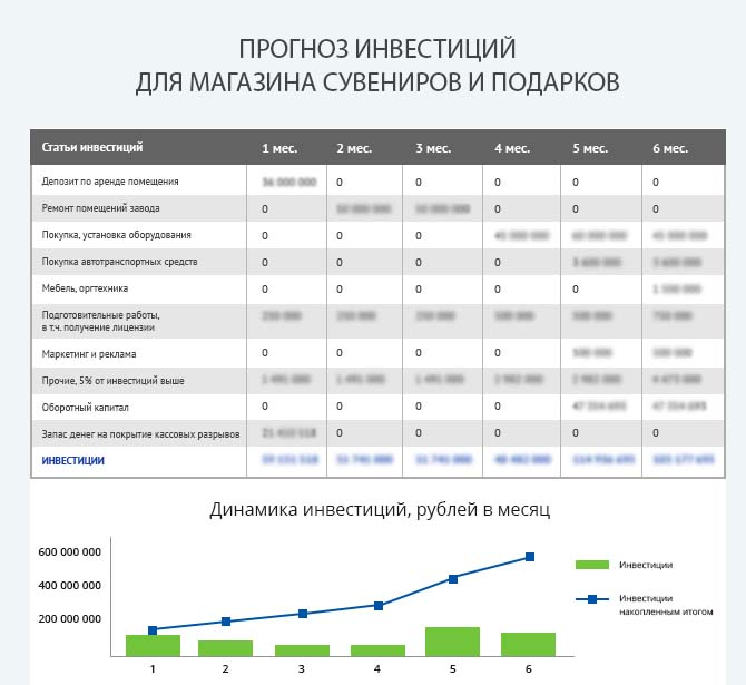 Детальный расчет инвестиций магазина сувениров