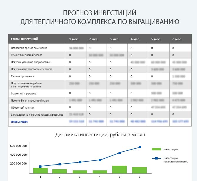 Детальный расчет инвестиций тепличного комплекса