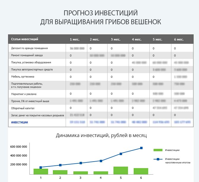 Детальный расчет инвестиций по выращиванию грибов вешенок