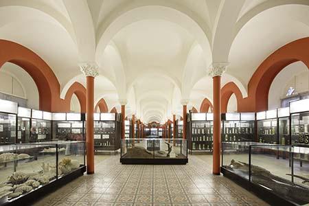 Бизнес-план открытия музея
