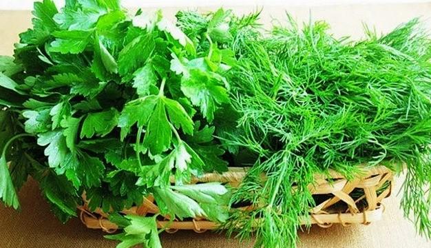 Бизнес-план теплицы по выращиванию зелени и зеленого репчатого лука