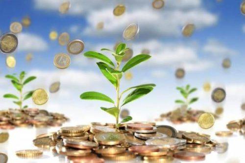 Индекс рентабельности инвестиций: определение, формула расчета